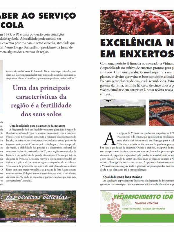 Vitinascimento na Business Portugal